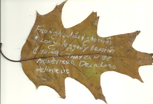 swanwick-leaf-poem
