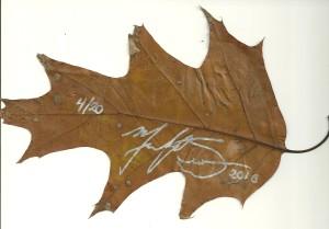 swanwick-leaf-sig